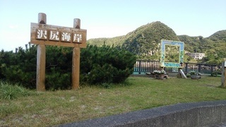 sawajiri (2).JPG